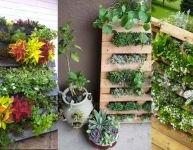 Cultivez votre propre jardin vertical