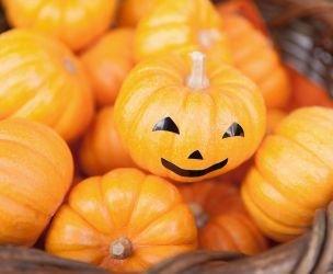 7 ideas for Halloween