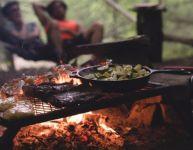 Salubrité des aliments en été