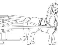 Dessin sur la cabane à sucre — cheval