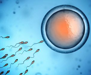 The miracle of conception