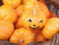 7 idées différentes pour Halloween