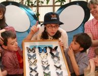 La grande séduction... des papillons!