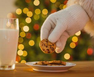 10 cookies for Santa