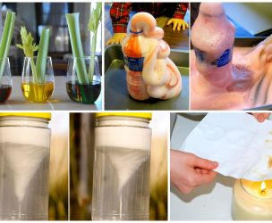 Fun science experiments for the kids