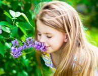 Les souvenirs olfactifs