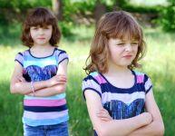 Mes jumeaux ne s'entendent pas