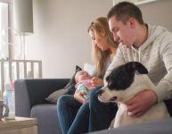 Présenter bébé au chien de la famille