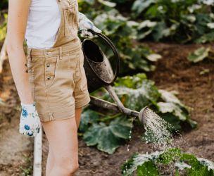 Pour jardiner en santé!