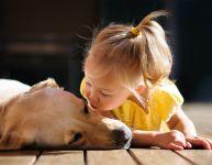 L'abc d'une relation harmonieuse entre chien et enfant