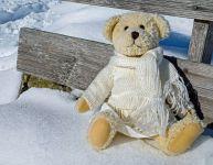 Bricoler des ours polaires