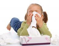 Zoom sur les germes