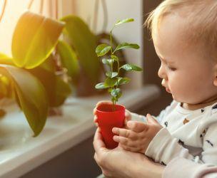 Bébé écolo : par où commencer?