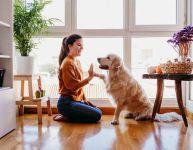 5 astuces pour remplir la maison d'énergies positives